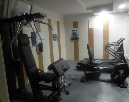 The fitness area, at the disposal of our guests.